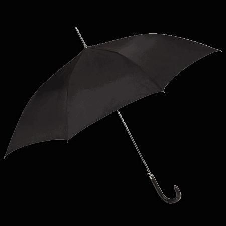 Lange Paraplu GA302