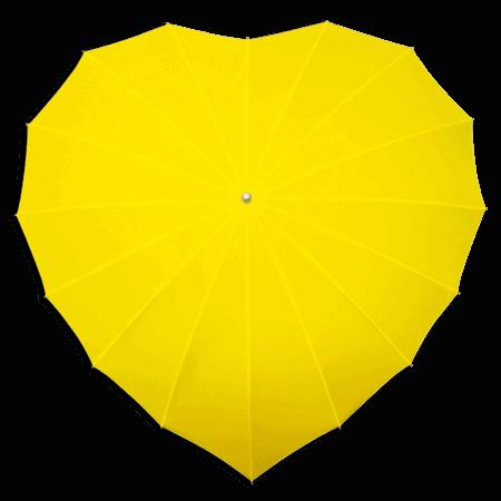 Lange Paraplu LR8